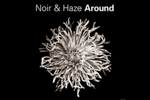 Noir and Haze - Around (Solumun Vox Mix)