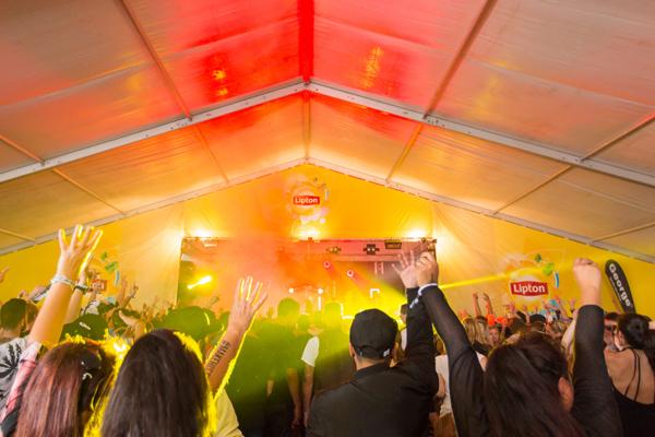 PHOTOS: Homegrown Festival 2016