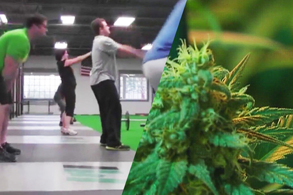 Let's take a look at The 'World's First Cannabis-Friendly Gym'