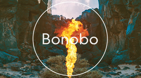 Bonobo's new music video featuring Nick Murphy - 'No Reason' is out!